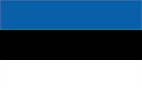 traducteur estonien
